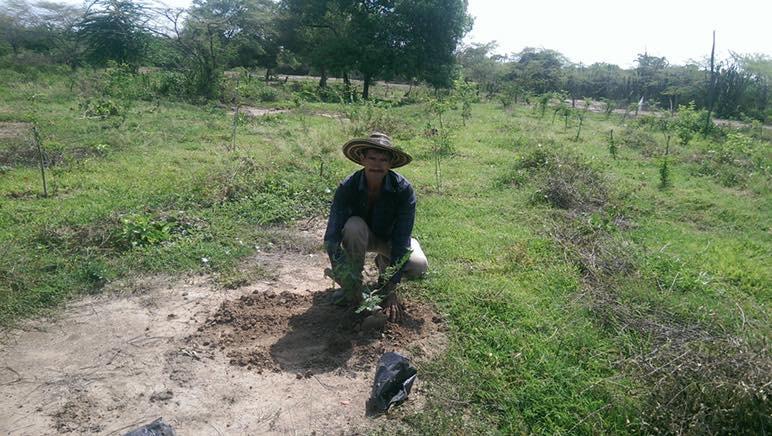 ColombiaMedio ambiente responsabilidad social corporativa yanapaqui
