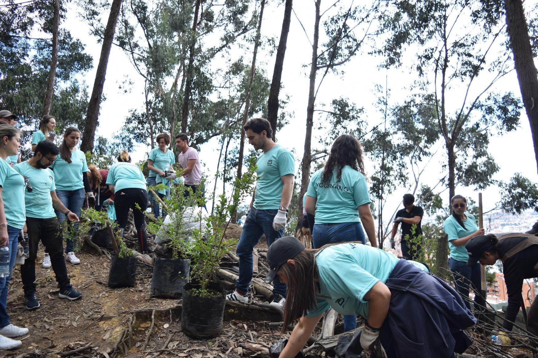 Yanapaqui Servicios Voluntariado Corporativo