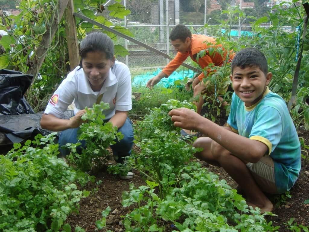 Educación ambiental en programas empresariales yanapaqui